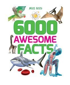 STEM 6000 Awesome Facts - Cover